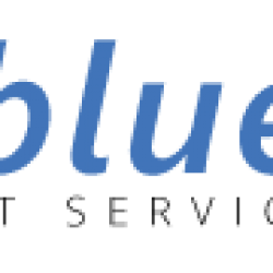 bluesys_it_services logo