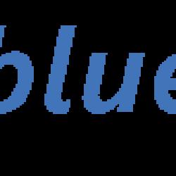 bluesys_it_services logo